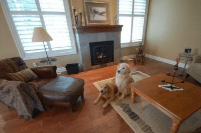 Great room with a large fireplace and two dogs